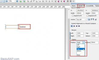 如何更改adobe form中text field对象的caption位置