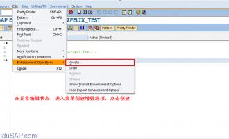 SAP中Enhancement spot增强教程