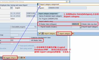 使用逻辑数据库PNP开发HR报表