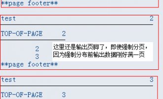 [list报表开发]-如何强制分页-[NEW-PAGE]