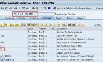 SALV教程10-列属性设定-隐藏列