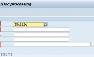 IDoc测试工具WE19使用教程