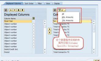 SALV教程17-布局列分组(Columns Specific Grouping)