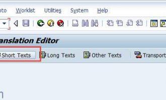 如何翻译事务代码(tcode)描述-SE63