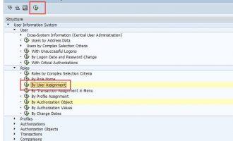 如何查找用户下是否有某个权限对象(authorization object)-SUIM
