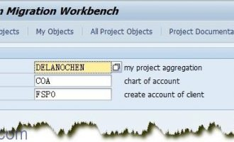 LSMW的简单范例-LSMW导入会计科目