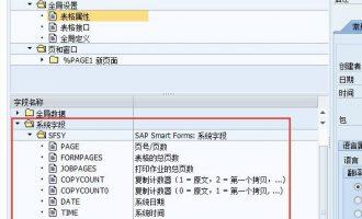 Smartforms中的系统字段