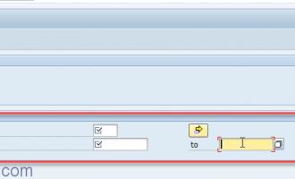 [选择画面]根据不同的radion button显示不同的选择条件实例