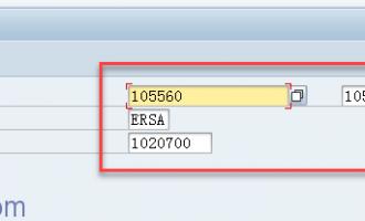 如何取得选择画面字段中的输入值[RS_REFRESH_FROM_SELECTOPTIONS]