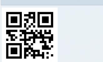[代码]ABAP生成二维码(QR Code)例子