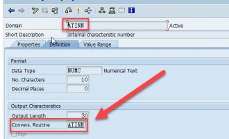数据字典SE11/SE16中conversion exits切换显示