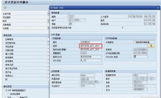 财会凭证打印IDCNDOC增强-adobe form中增加字段