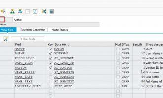 通过view USER_ADDRP 根据SAP用户ID读取姓名